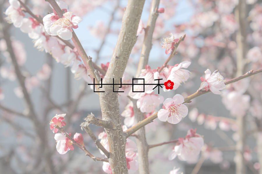 名代芭蕉(大阪/総本家 釣鐘屋本舗)